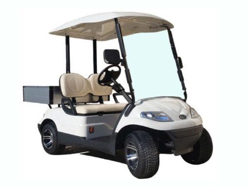 Multicar golfette électrique : utilitaire