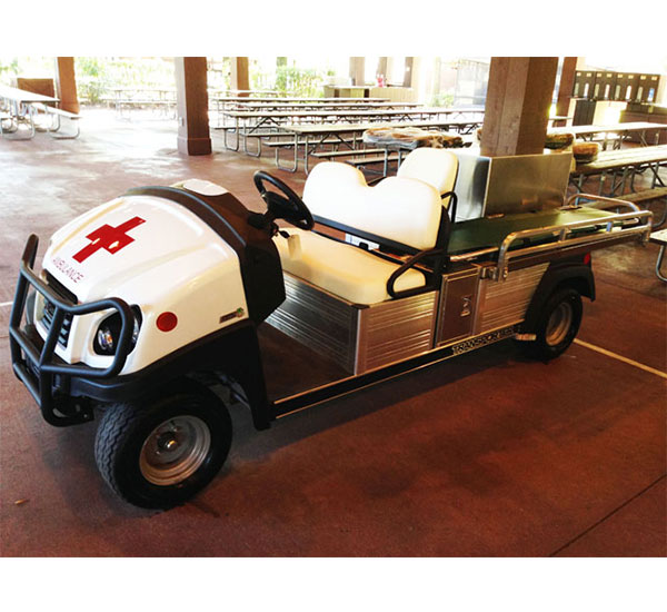 Innovep Véhicule Utilitaire Club Car Transporter 4 6